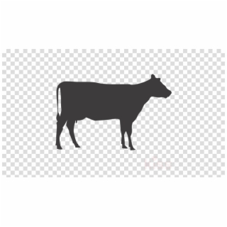 Animal silhouette clipart cow banner black and white download HD Nativity Animals Silhouette Clipart Beef Cattle Clip Transparent ... banner black and white download