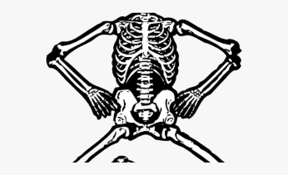 Animal skeleton clipart clipart Skeleton Clipart Black And White - Human Bone Clip Art #914504 ... clipart