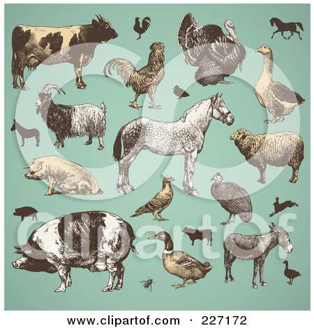 Animal stock clipart. Royalty free illustrations of