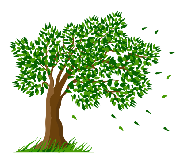 Clipart money tree vector transparent download Final Animal Behavior Infographic - by Siobhan Hubbell [Infographic] vector transparent download