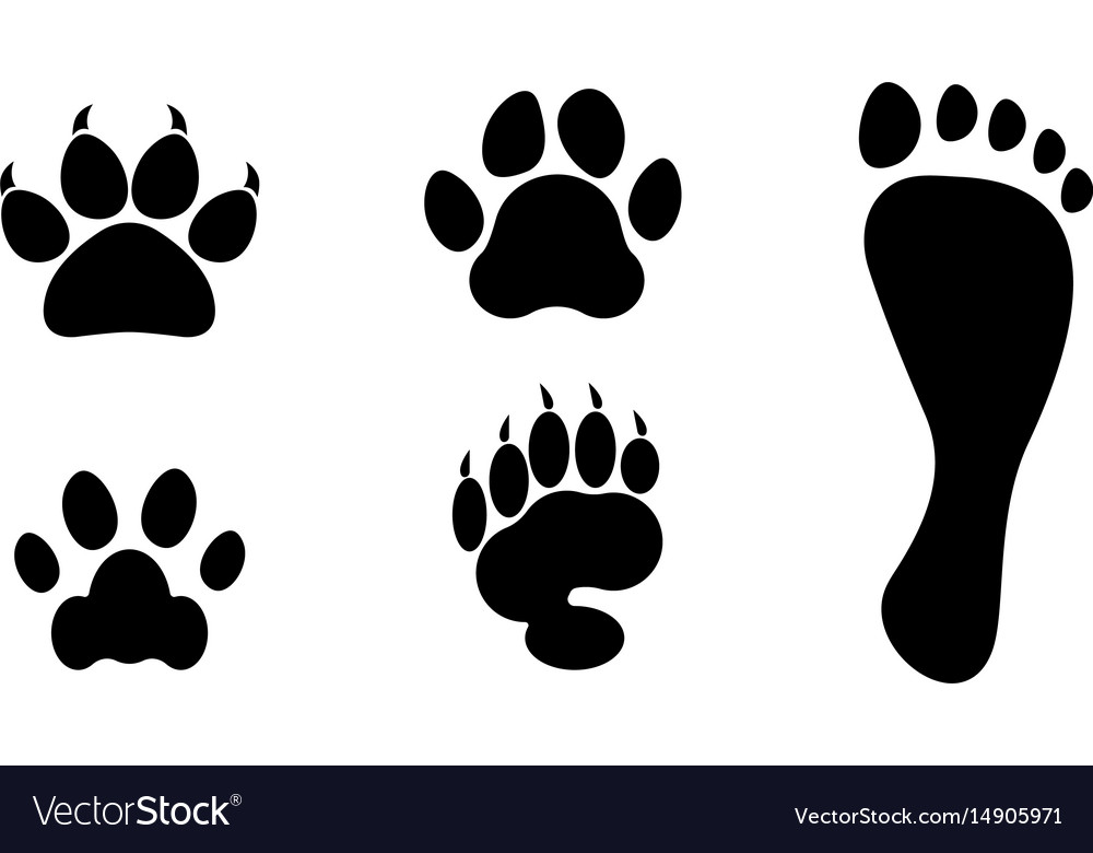 Animal vs man clipart picture black and white Animals and man foot print clip art picture black and white