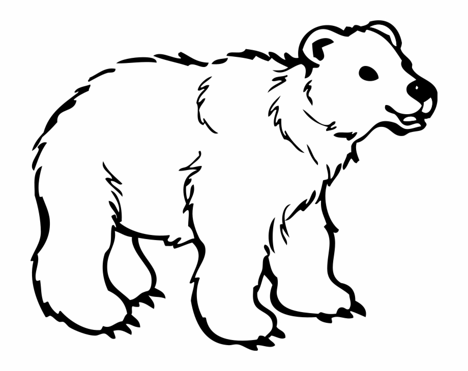 Free polar bear clipart black and white vector black and white Jungle Animal Coloring Pages - Black And White Polar Bear Free PNG ... vector black and white