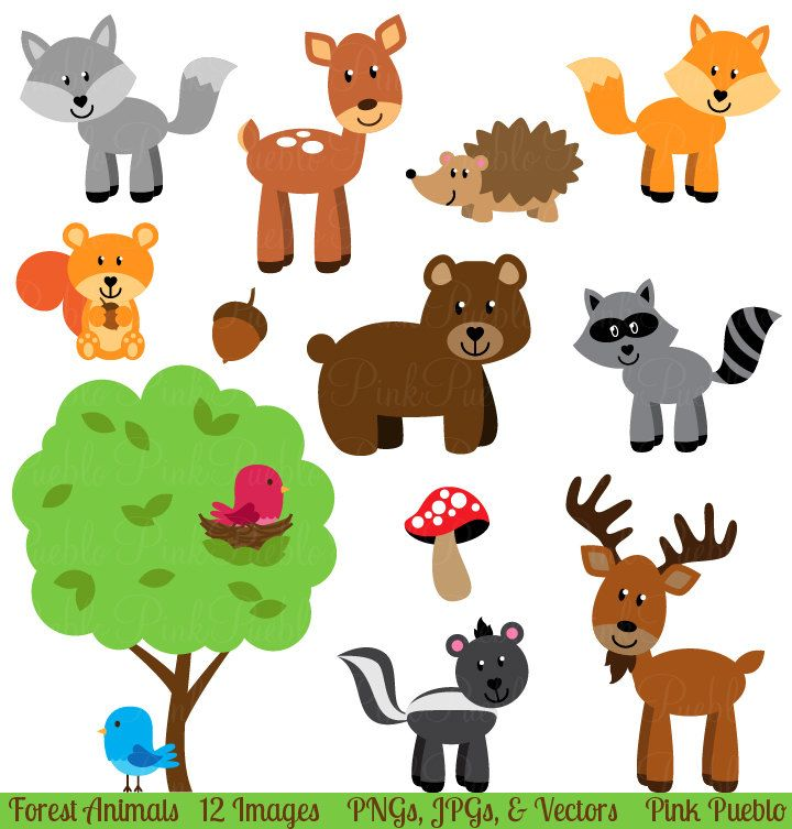Animals clipart free download jpg freeuse download Forest Animal Clip Art, Forest Animals Clipart, Woodland Animal Clip ... jpg freeuse download