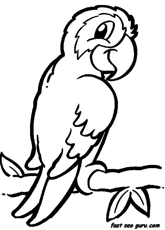 Animals coloring page clipart graphic transparent Animal Coloring Pages | Free download best Animal Coloring Pages on ... graphic transparent