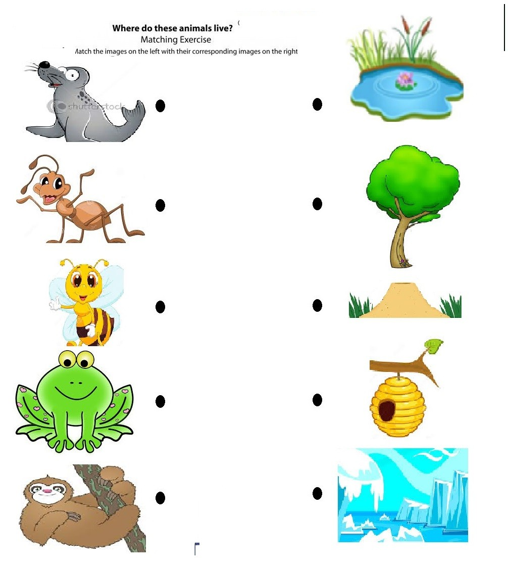 Animals homes clipart svg stock For Animals Home Clipart And Their Homes Matching To Worksheet ... svg stock