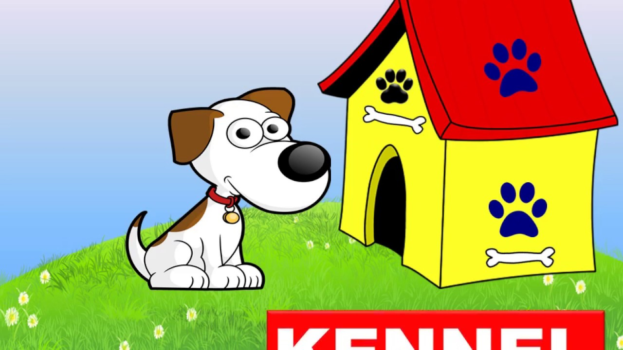 Animals homes clipart picture freeuse library Animals Homes Names, Types - Lesson for Kids  -Kindergarten,Preschoolers,Grade 1 picture freeuse library