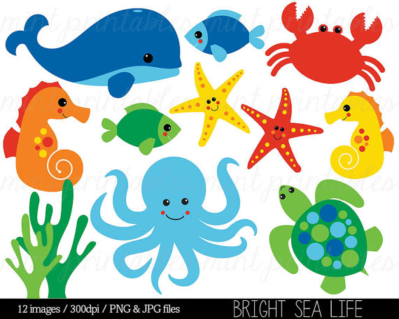 Clipart sea life clipart black and white Sea Animal Clipart, Under the Sea, Baby Sea Creatures Clip Art ... clipart black and white