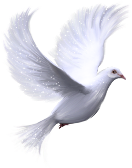 Animated dove clipart picture transparent download Pin by Dalia Weisbecker on deseos de pasion | Birds, Bird clipart ... picture transparent download