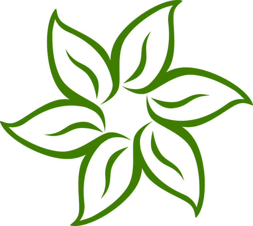 Animated green flowers pictures. Flower animation clipart