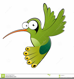 Animated hummingbird clipart