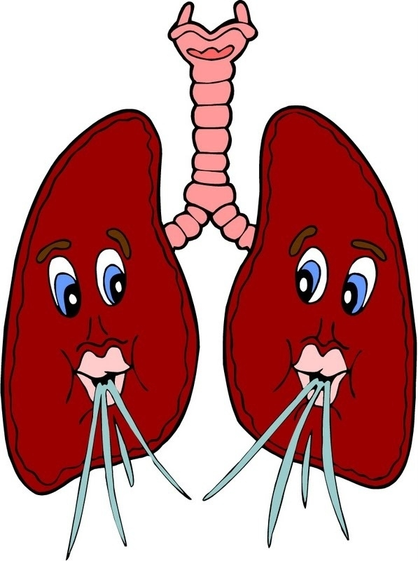 Animated lungs clipart clip art black and white library Lungs Clipart For Kids | Letters Example Regarding Lungs Clipa - 800 ... clip art black and white library