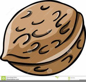 Animated nuts clipart