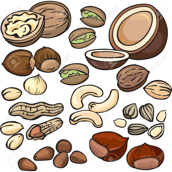 Animated nuts clipart clipart free library Nuts clipart cartoon, Nuts cartoon Transparent FREE for download on ... clipart free library