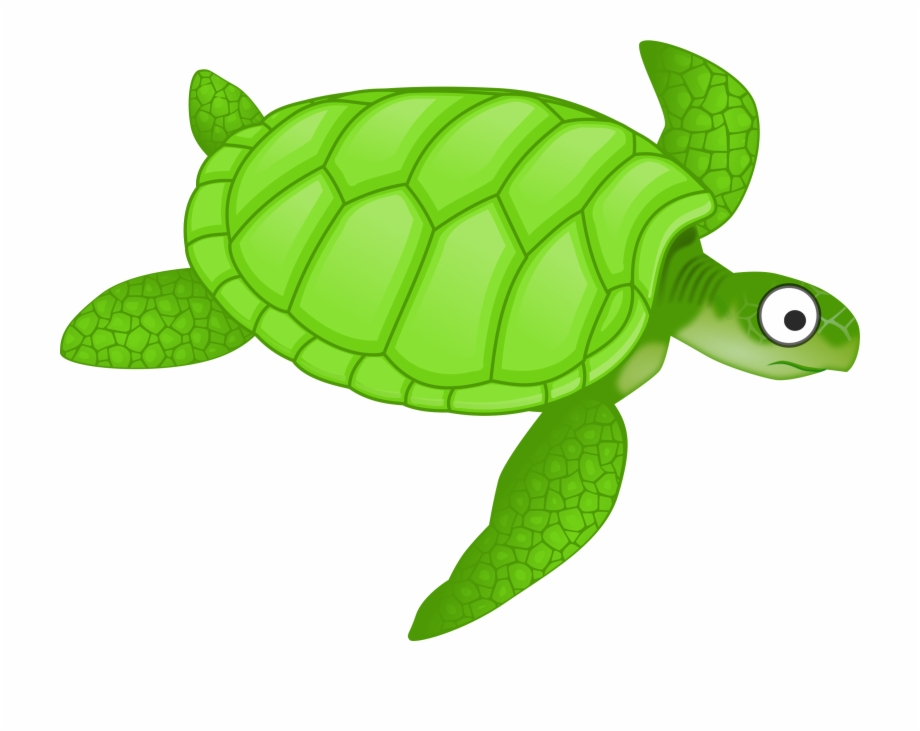 Animated sea turtle clipart vector royalty free Clipart Cartoon Turtle 2 Png - Green Sea Turtle Clipart Free PNG ... vector royalty free