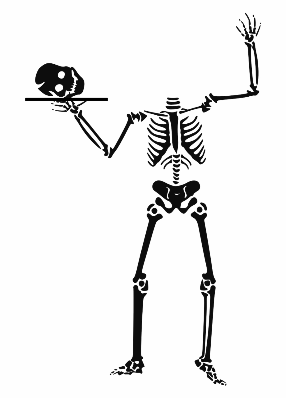 Animated skeletons clipart clip freeuse stock Download Original - Skeleton Animated, Transparent Png Download For ... clip freeuse stock