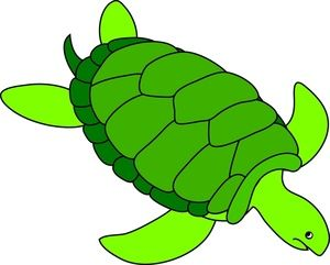 Animated turtle clipart graphic freeuse Animated Turtle Clipart   Voyager, the making of.   Turtle, Clip art ... graphic freeuse