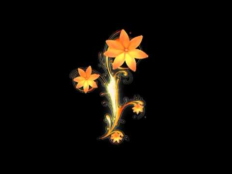 Animation flowers free download picture library download Flower Animated Wallpaper HD - Looping , Free video download - YouTube picture library download