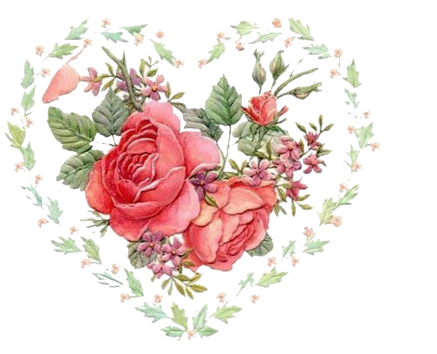 Animation Rose - Love Rose 866*701 transprent Png Free Download ... vector stock