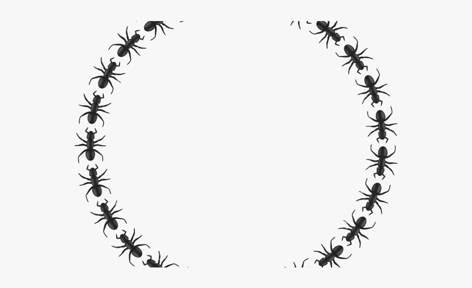 Ant clipart border png black and white stock Ant Clipart Border - Icon Border Circle Png #344136 - Free Cliparts ... png black and white stock
