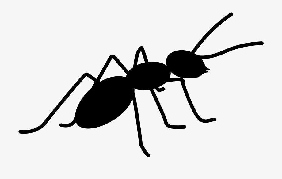 Ant icon clipart royalty free download Ants Png Images Free Download Ⓒ - Ants Icon Png, Cliparts ... royalty free download