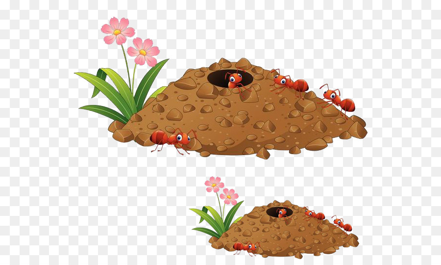 Ant nest clipart vector freeuse Ant Cartoon png download - 600*531 - Free Transparent Ant png Download. vector freeuse