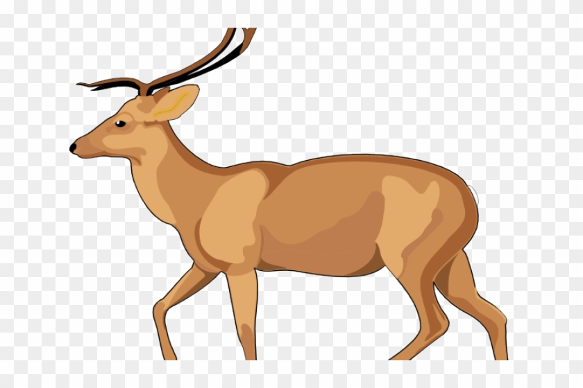 Antelope clipart png png freeuse stock Deer Clipart Antelope - Debden Park High School, HD Png Download ... png freeuse stock