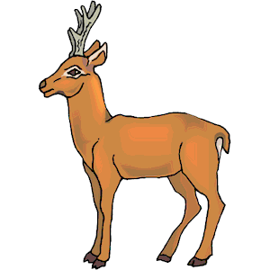 Antelope clipart png clipart download Pronghorn Antelope Clipart clip art 12 - 300 X 300 Free Clip Art ... clipart download