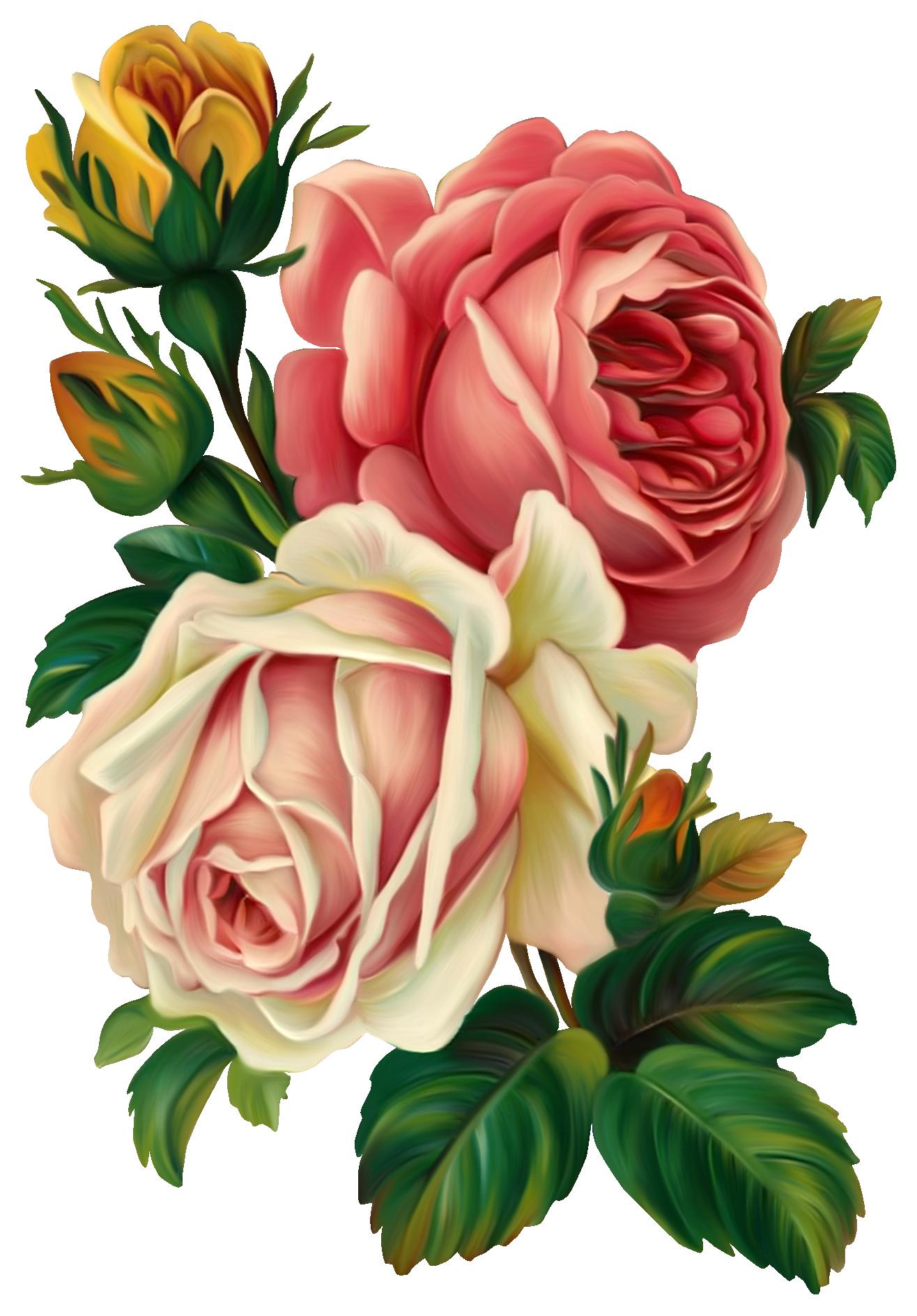 C utare google drawing. Flower clipart vintage