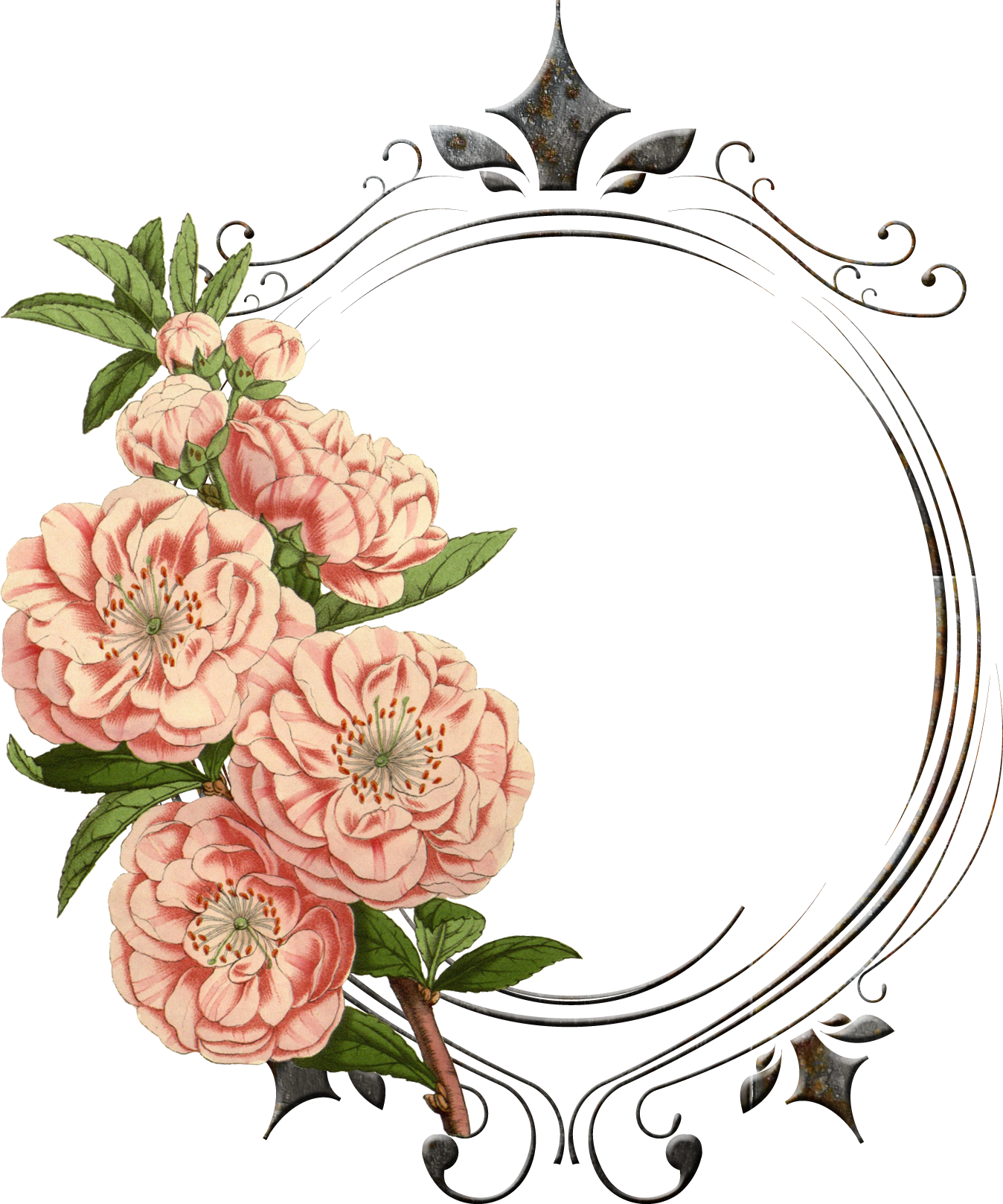 Free vintage flower clipart vector vintage flower png - Поиск в Google | Background | Pinterest ... vector