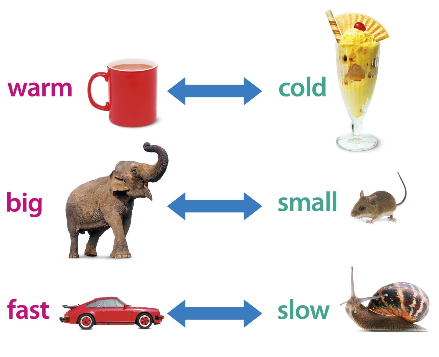 Antonyms examples clipart. Clipartfest all tsiup