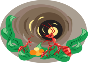 Ants nest clipart clip free stock Ants In Nest Clip Art at Clker.com - vector clip art online, royalty ... clip free stock