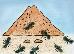 Ants nest clipart png free Free Ant Colony Cliparts, Download Free Clip Art, Free Clip Art on ... png free