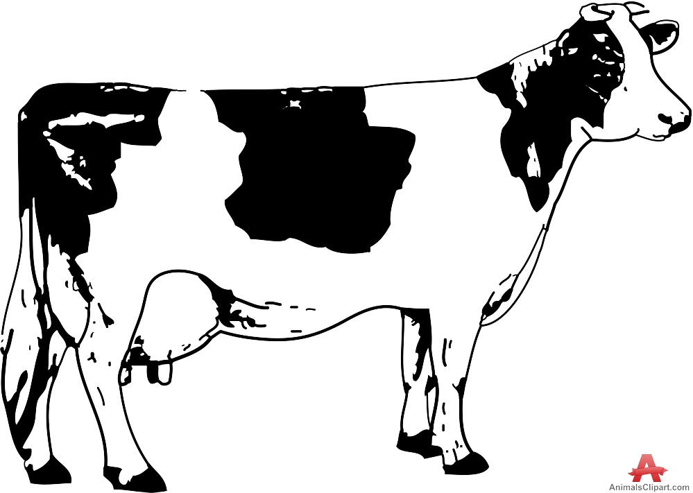 Milking Cow with Teats Clipart | Free Clipart Design Download clip freeuse library