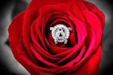 Aoii flower clipart svg download 128 Best Jacqueminot Roses & AOII images in 2016   Alpha omicron pi ... svg download