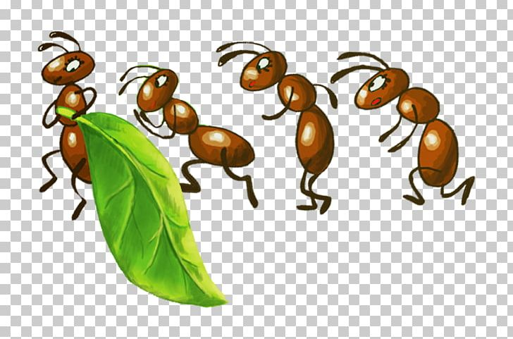 Aphid clipart image transparent stock Ant Insect Bee Drawing Aphid PNG, Clipart, Animal, Ant, Ant Cartoon ... image transparent stock