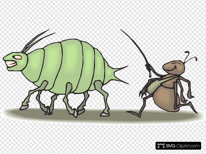 Aphid clipart clip art library library Ant Hearding An Aphid Clip art, Icon and SVG - SVG Clipart clip art library library