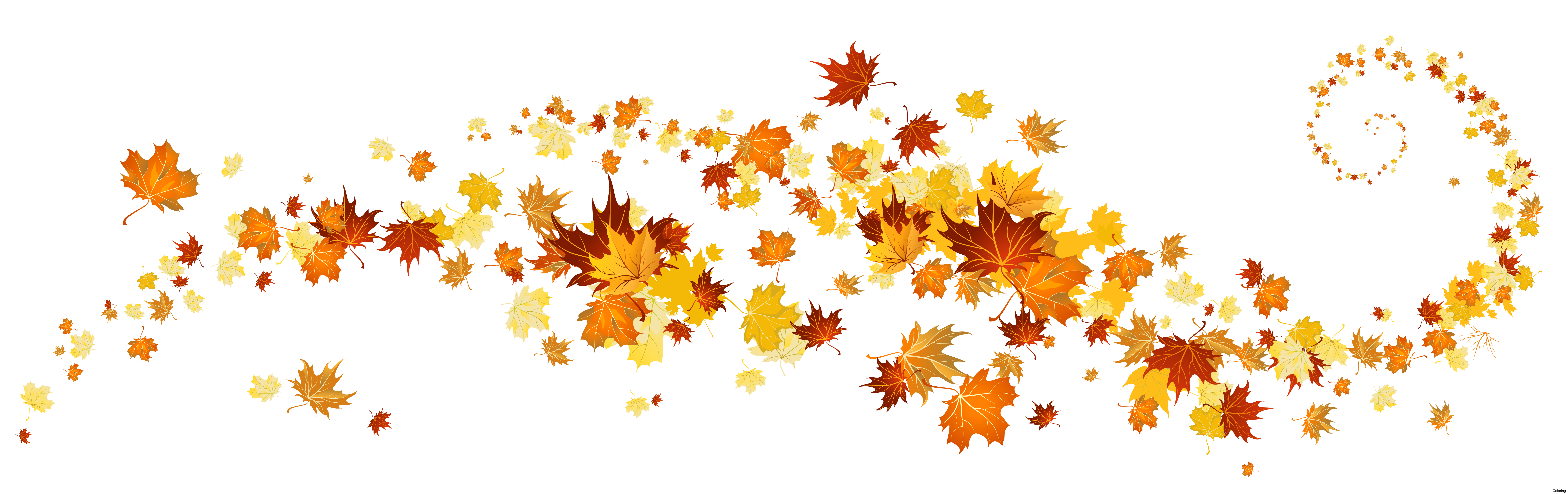 Apple and fall leaf clipart vector black and white stock Autumn leaf color Clip art - autumn leaves 7561*2383 transprent Png ... vector black and white stock