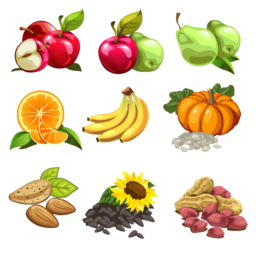 Pumpkin and sunflower clipart free clip library Nut Cartoon Fruit Illustration - Banana apple pear orange pumpkin ... clip library