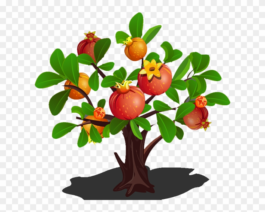 Apple doesn t fall far from the tree clipart image black and white library Green Clipart Apple Tree - Pomegranate Tree - Png Download (#2663 ... image black and white library