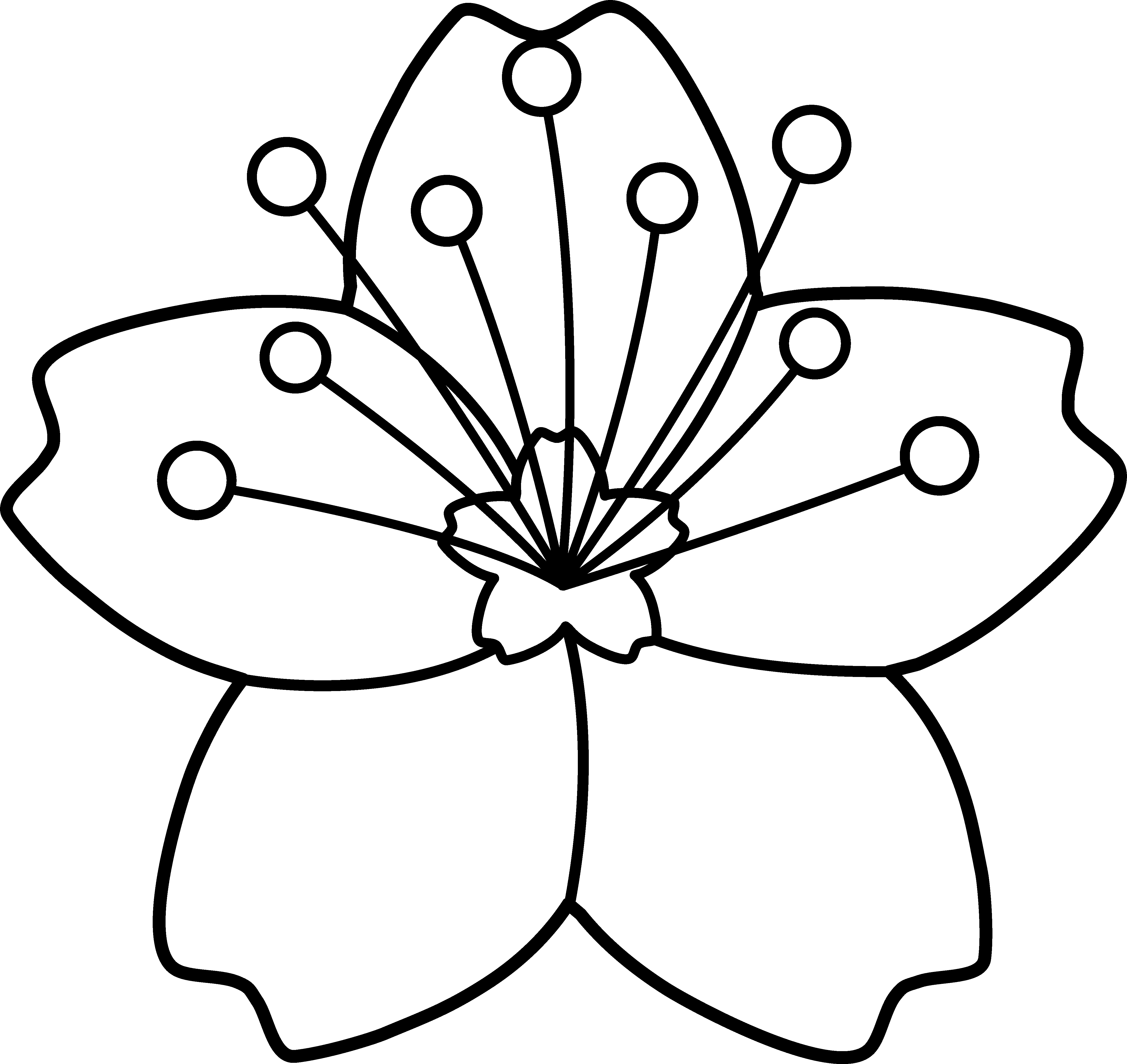 Apple blossom border clipart black and white picture transparent library Collection of 14 free Blossomed clipart line. Download on ubiSafe picture transparent library
