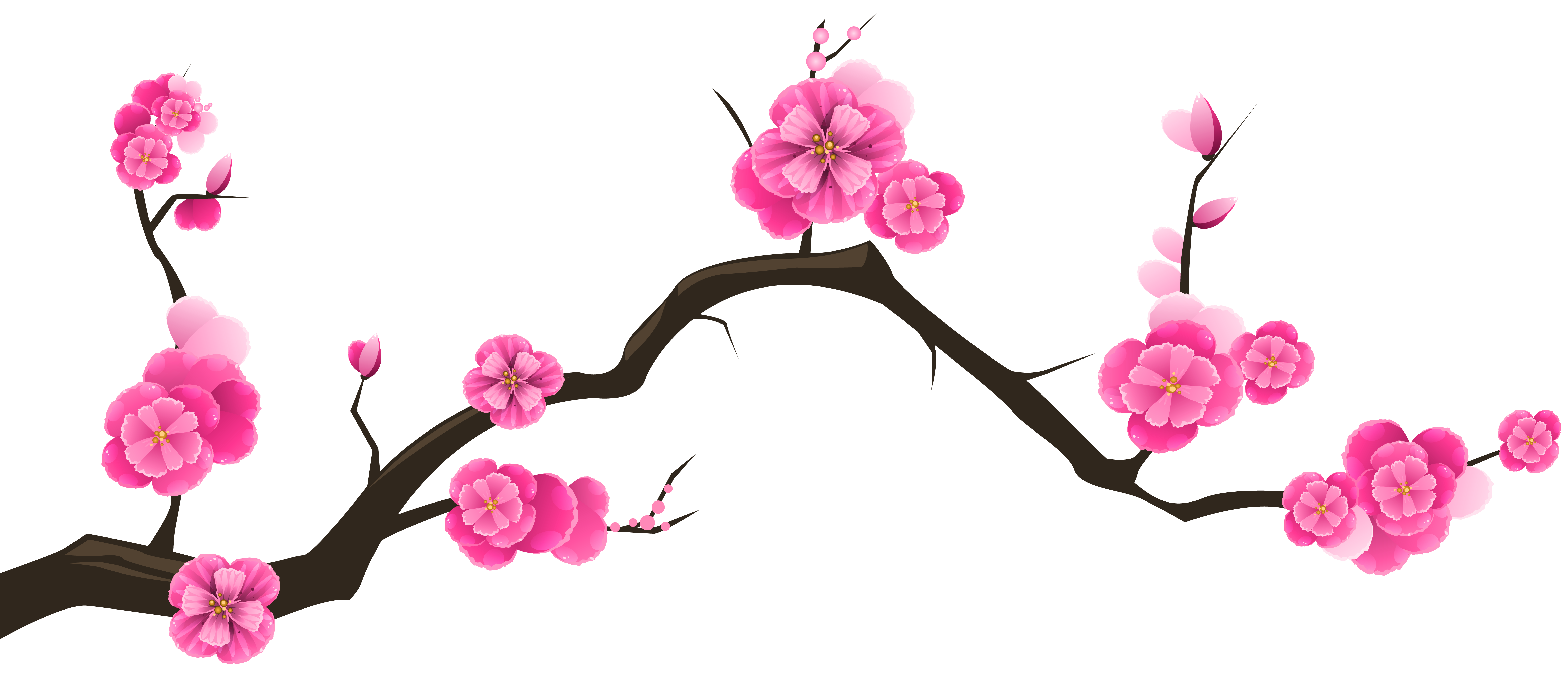 Rustic flower clipart picture black and white stock Cherry Blossom Clipart at GetDrawings.com | Free for personal use ... picture black and white stock
