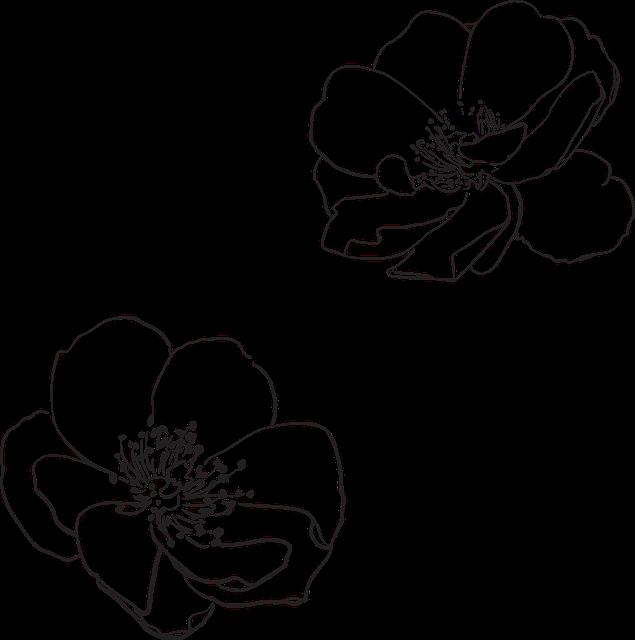 Apple blossom clipart black and white freeuse Free Image on Pixabay - Rose, Wild, Flower, Flowers | Pinterest ... freeuse