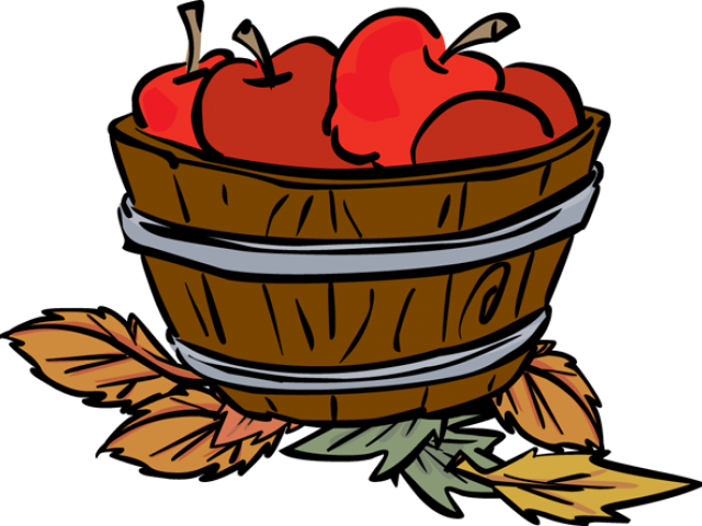 Apple bucket clipart clip art freeuse Whole Apple Cliparts Free Download Clip Art - carwad.net clip art freeuse