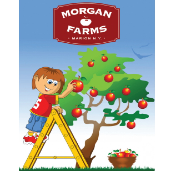 Free clipart apple picking jpg royalty free library Apple Picking in Greater Rochester, NY and the Finger Lakes | Kids ... jpg royalty free library