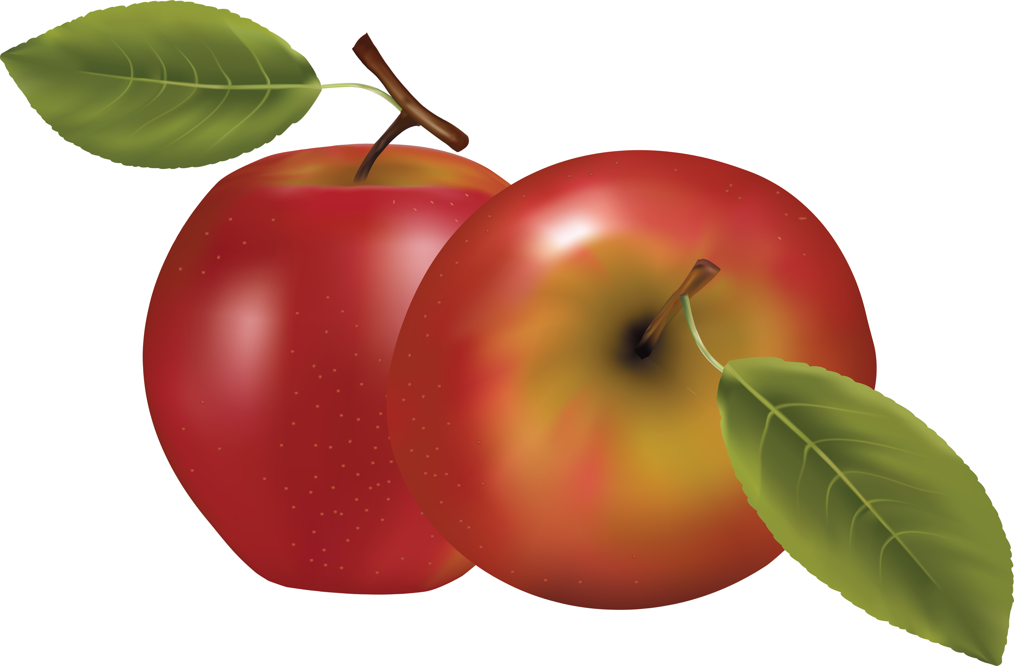 Apple clipart transparent background svg royalty free Red Apple PNG Image - PurePNG | Free transparent CC0 PNG Image Library svg royalty free