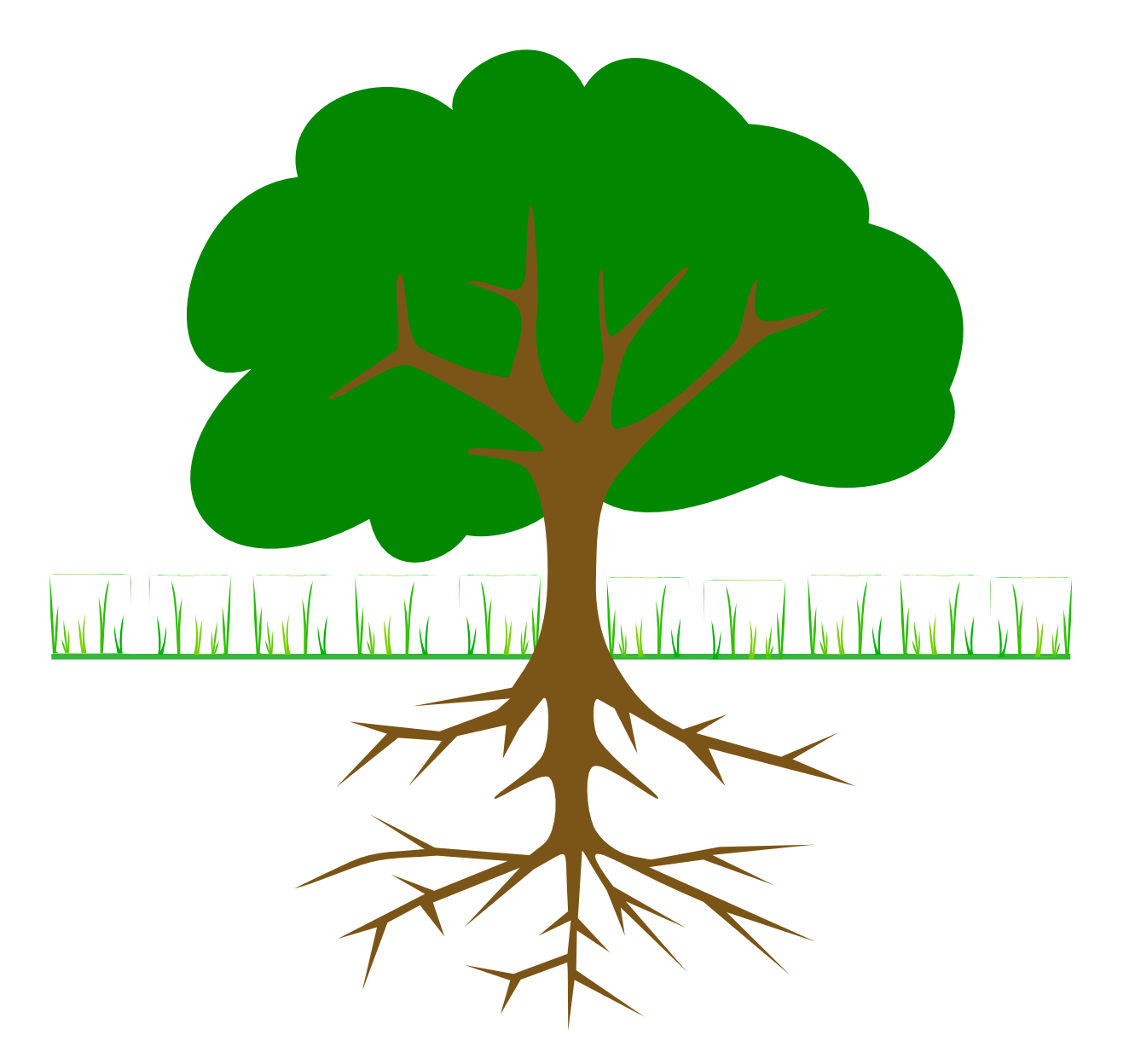 Apple clipart real. Tree roots looking png