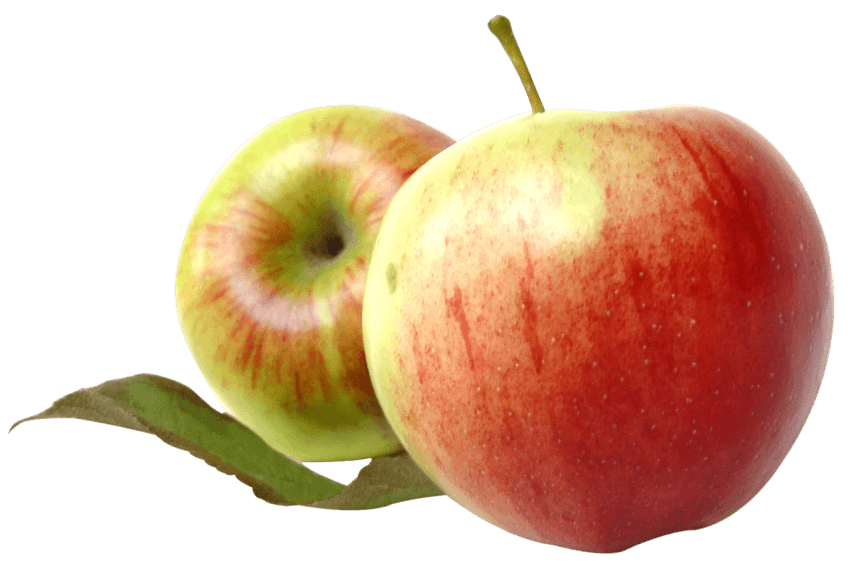 Apple clipart two leaves image free library Two Red Apples with Leaves png - Free PNG Images | TOPpng image free library