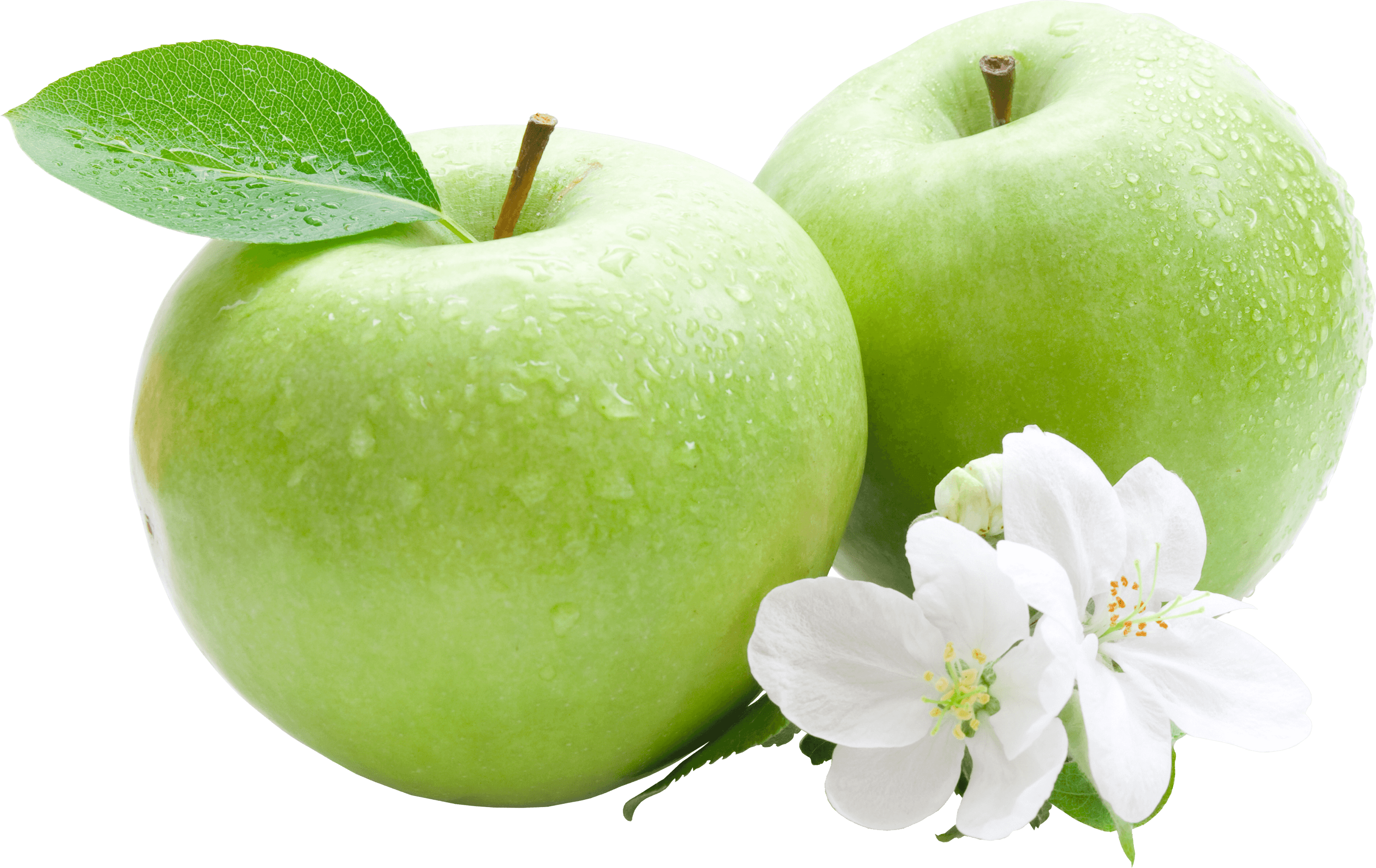 Apple clipart vintage picture royalty free stock Apples On A Branch Vintage transparent PNG - StickPNG picture royalty free stock
