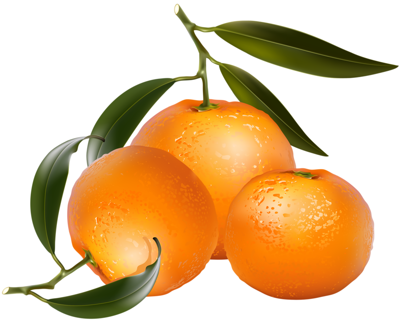 Apple orange lemon clipart stock jwC1MJIqecdy.png | Album stock