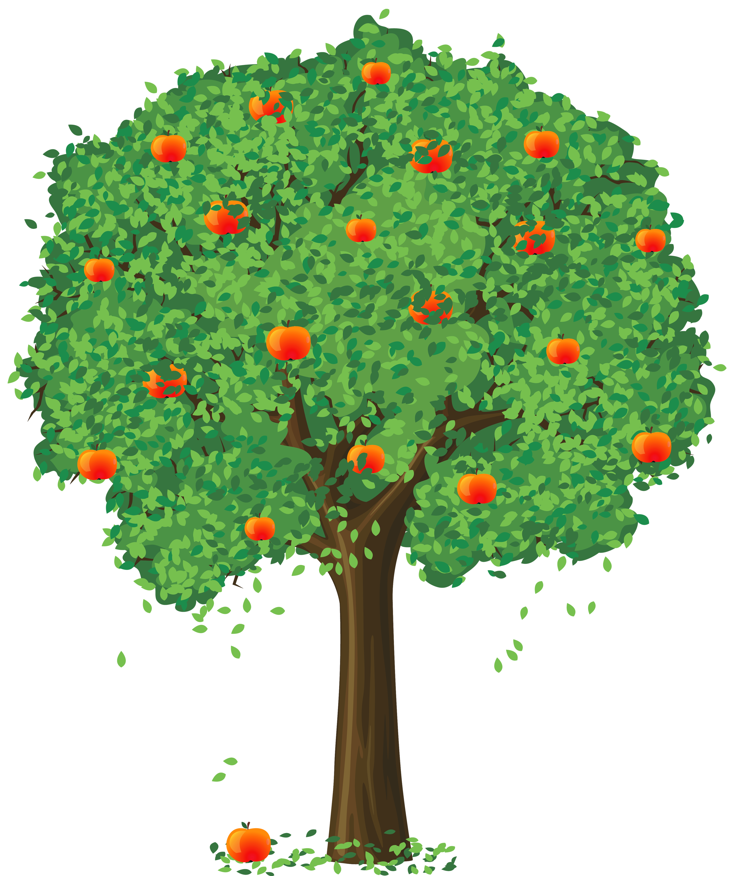 Clipart apple seeds jpg library download Apple Tree Clipart Png | Letters Format jpg library download